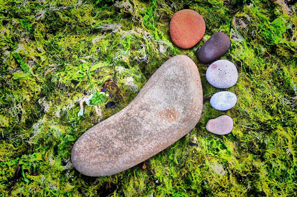 Stones_Creative_Legs_469670
