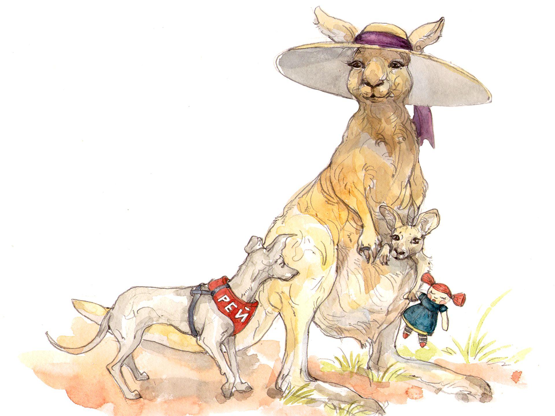 8-kengoroo