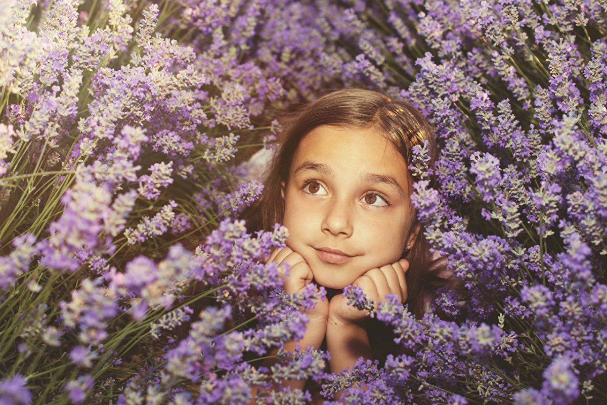 Lavandula_Little_girls_Face_Glance_527017_1280x854